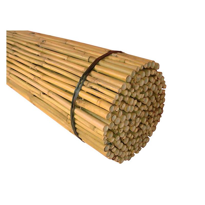 Μπαμπού - Bamboo  Ø 20-25 με περαστό σύρμα